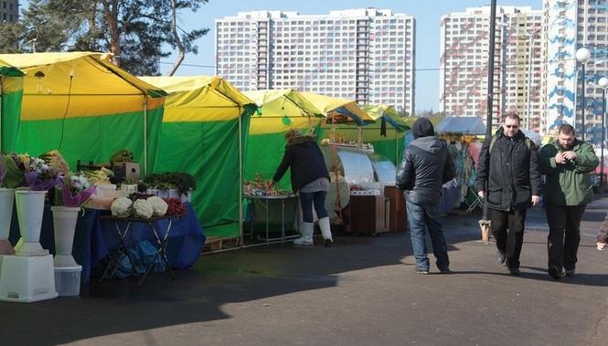 Календарь посадки 2017 казахстан